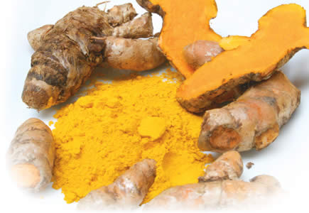 curcuma anti cancro